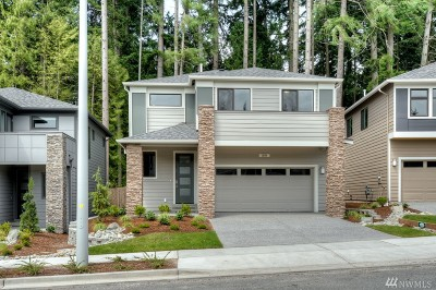 Bothell Single Family Home For Sale: 1201 199th St SE #ARV55