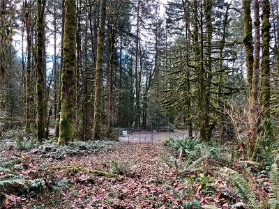 Issaquah Residential Lots & Land For Sale: 25780 SE 138th St