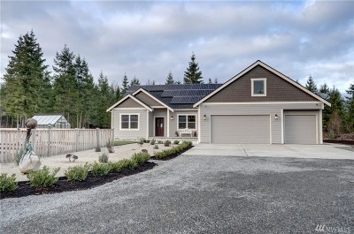 Yelm Single Family Home For Sale: 14440 Mountain Vista Dr SE