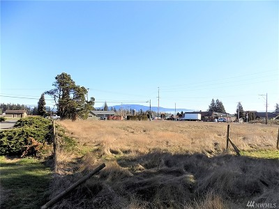Lynden Residential Lots & Land For Sale: 1496 E Badger Rd