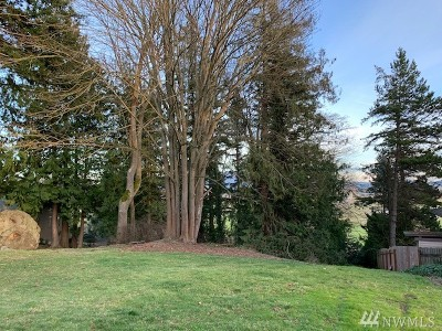 Skagit County Residential Lots & Land For Sale: Patricia Lane