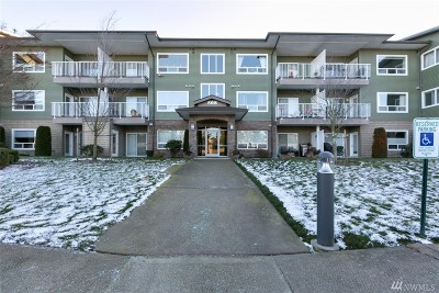 Bellingham Condo/Townhouse For Sale: 508 Darby Dr #C313
