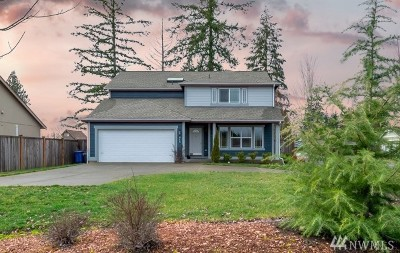 Napavine Single Family Home For Sale: 215 Stadium Wy
