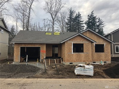 Bellingham Condo/Townhouse For Sale: 4333 Sumac Lane #Lot 9