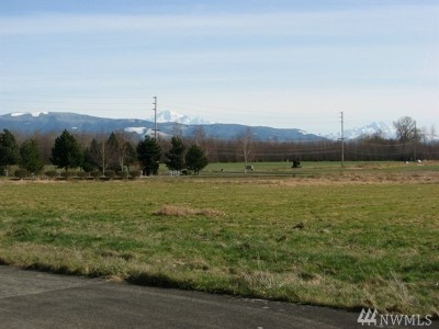 Lynden Residential Lots & Land For Sale: Judson St