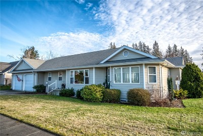 Lynden Single Family Home Contingent: 800 Bender Place