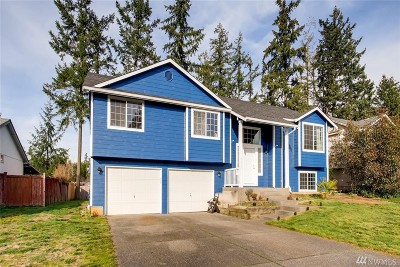 Spanaway Single Family Home For Sale: 8415 199th St Ct E