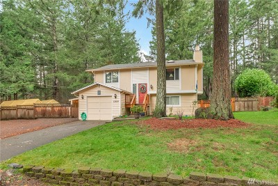 Gig Harbor Single Family Home For Sale: 13604 97th Ave NW