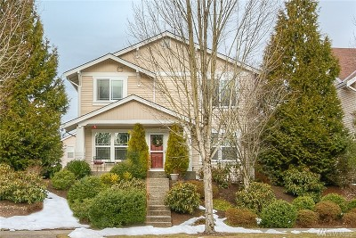 Snoqualmie Single Family Home For Sale: 7703 Douglas Ave SE