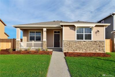 Skagit County Single Family Home For Sale: 3224 Braeburn Alley