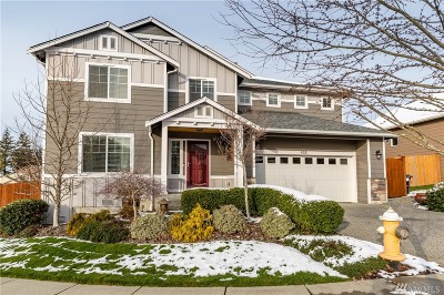 Skagit County Single Family Home For Sale: 455 Barry Lp