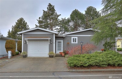 Bothell Single Family Home For Sale: 911 243rd St SW