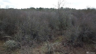 Residential Lots & Land For Sale: Big Sky Dr