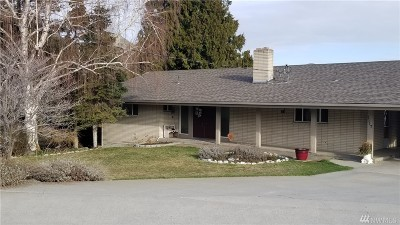 Chelan County Single Family Home For Sale: 1117 Appleland Dr
