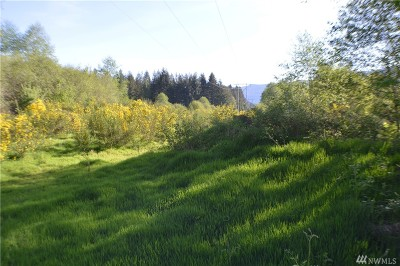 Residential Lots & Land For Sale: 105 Obsidian Dr