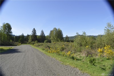 Residential Lots & Land For Sale: 110 Obsidian Dr