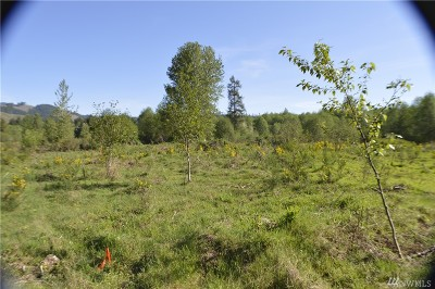 Residential Lots & Land For Sale: 114 Obsidian Dr