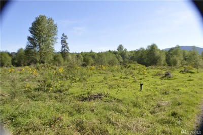 Residential Lots & Land For Sale: 118 Obsidian Dr