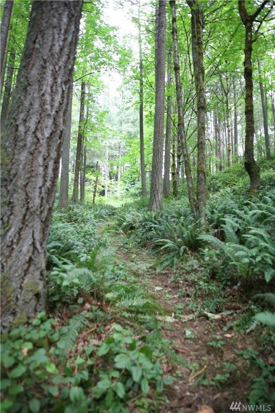 Sammamish Residential Lots & Land For Sale: 37 212th Wy SE