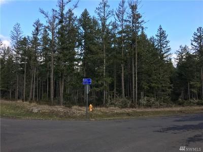 Lacey Residential Lots & Land For Sale: 5311 Kestrel Lane NE