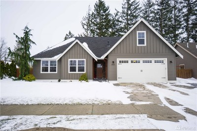 Lynden Single Family Home For Sale: 2013 Mercedes Dr