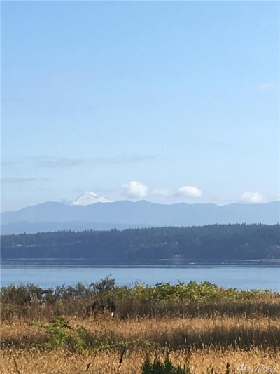 Camano Island Residential Lots & Land For Sale: 2914 Newell Rd