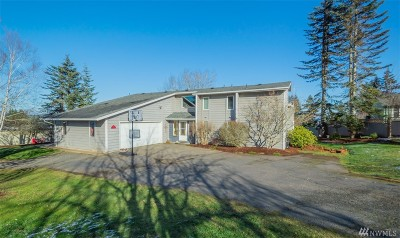 Chehalis Single Family Home For Sale: 262 Curtis Hill Rd #8