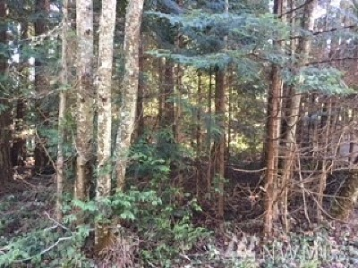 Residential Lots & Land For Sale: 2717 Fox St