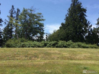 Birch Bay WA Residential Lots & Land For Sale: $119,000