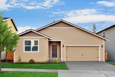 Thurston County Single Family Home For Sale: 7020 Munn Lake Dr SE