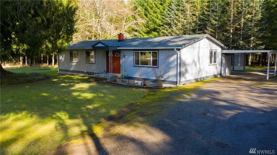 Centralia Single Family Home For Sale: 272 Summers Rd