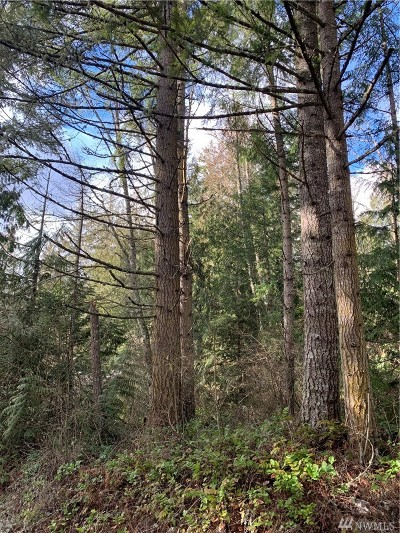 Yelm Residential Lots & Land For Sale: 22248 Bluewater Dr SE