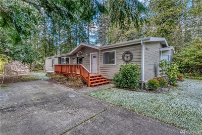 Gig Harbor Single Family Home For Sale: 14010 132nd St NW