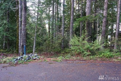 Residential Lots & Land For Sale: 70 N Lookout Place