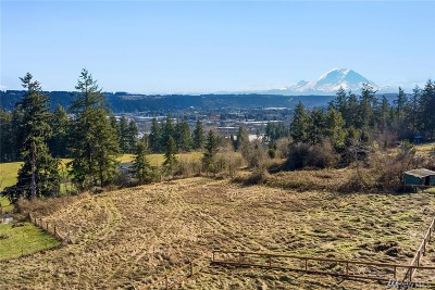 Edgewood Single Family Home For Sale: 4423 127th Ave E