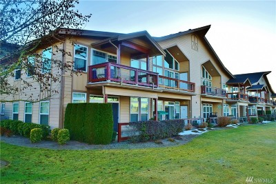 Lynden Condo/Townhouse Sold: 312 Homestead Blvd #104