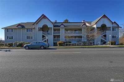 Snohomish Condo/Townhouse For Sale: 509 1st St #205