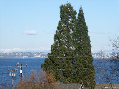 Port Orchard Single Family Home For Sale: 2083 Spring St E