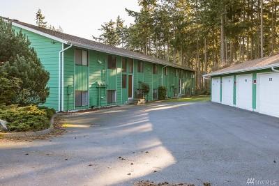 Oak Harbor Condo/Townhouse Sold: 645 NW Atalanta Wy #102