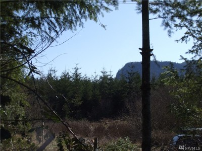 Enumclaw Residential Lots & Land For Sale: 36610 Veazie Cumberland Rd SE #C-1