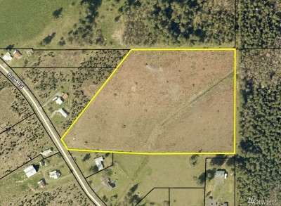 Residential Lots & Land For Sale: 295 Brim Rd