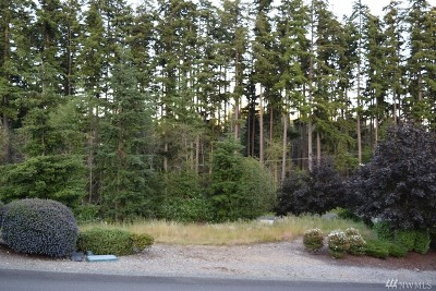 Camano Island Residential Lots & Land For Sale: Lot 45, St Moritz Ct