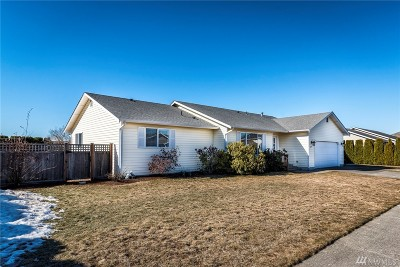 Lynden Single Family Home For Sale: 625 Dahlia St