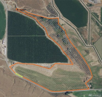 Farm For Sale: W Nka Hatton Rd
