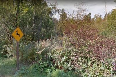 Auburn Residential Lots & Land For Sale: SE Lake Moneysmith Rd