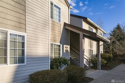 Bellingham Condo/Townhouse For Sale: 4226 Wintergreen Cir #296