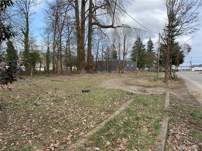 Shelton Residential Lots & Land For Sale: 102 Park St