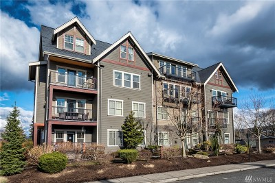 Bellingham Condo/Townhouse For Sale: 1000 High St #101