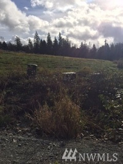 Mount Vernon Residential Lots & Land For Sale: 17152 Big Fir Place