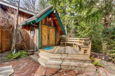Mason County Single Family Home For Sale: 781 E Lakeshore Dr